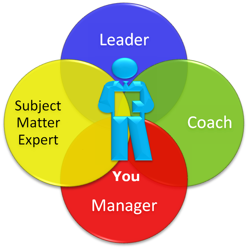 the role of project leader A description of the team leader responsibilities for building and facilitating effective product project manager and functional management to.